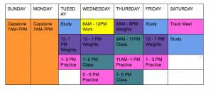 nursing-student-schedule